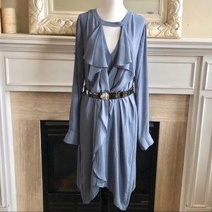 BCBG MaxAzria Ruffle Front Flowy Dress
